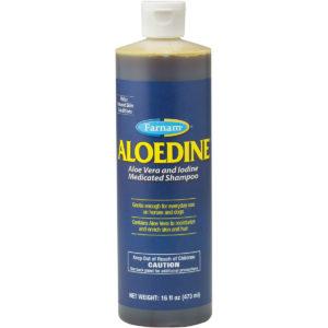 Aloedine Aloe Vera & Iodine Shampoo 16 oz