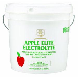 ELECTROLYTE APPLE 20 LB