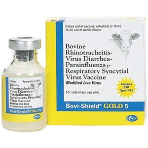 BOVI-SHIELD GOLD 5 5 DS 10 ML/BT