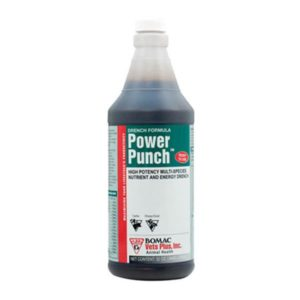 Power Punch 32oz bottle