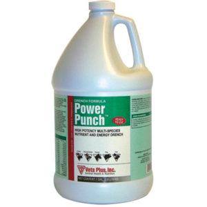 Power Punch Gal 1 gallon jug